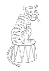 Circus illustration, tiger
