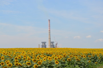 Thermal power station in Serbia - Kostolac.
