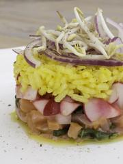 Tartare di salmone, ravanelli e riso