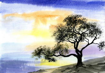 watercolor drawing landscape - tree near the river