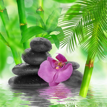 spa de fond - pierres noires et bambou sur l'eau