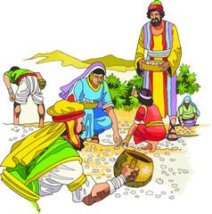 Campesinos recolectores en épocas del antiguo testamento