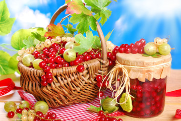basket of fresh red,white currant ,gooseberry and jar of preserv