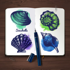 Set of hand drawn sketch and watercolor seashells.