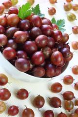 Gooseberry abundance