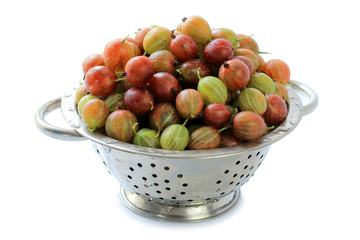 Gooseberry is in a colander