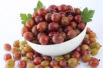 Ripe gooseberry abundance