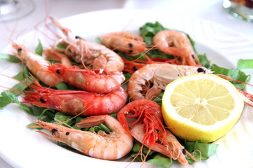Prawn of Denia,Costa Blanca,Alicante,Spain