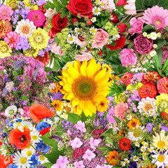 Background with flower bouquets