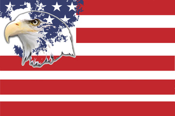 American eagle and stars and stripes background