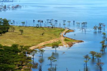 African landscape, bird's-eye view on lake Nakuru