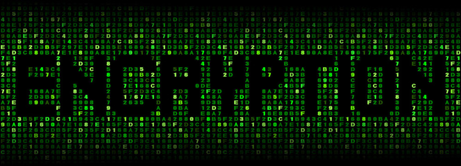 Encryption text on hex code illustration