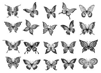 Set of twenty butterflies