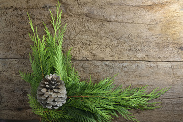 christmas fir tree with pinecone background