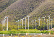 landscape of eco windmill turbines  fan in agriculture farm for - 68062050