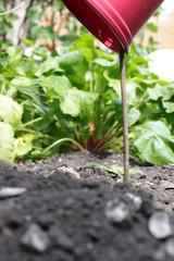 Plant Pot Marker