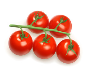 Cherry tomatoes, vector illustration