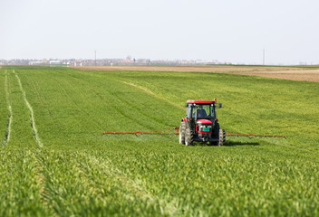 Tractor spraying wheat field with sprayer,