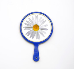 Hand mirror with reflection of daisy flower isolate on white