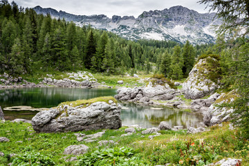 Mountain valley with green trees and lake in Julian alps