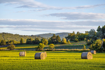 Hay rolls on green field at sunset