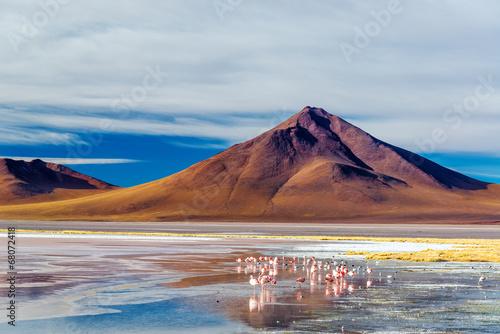 In de dag Vulkaan Volcano and Flamingoes