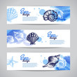 Seashell banners. Sea nautical design - 68073885