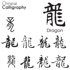 """Dragon"" character in different kind of Chinese Calligraphy"