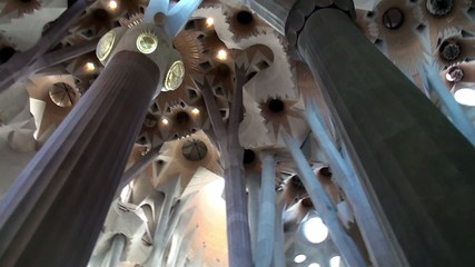 Inside of the Sagrada Familia church. Ceiling with columns.