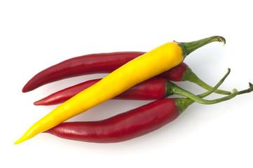 Chili, Capsicum; Annuum;