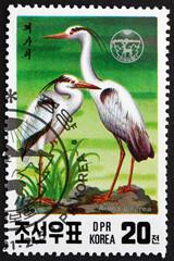 Postage stamp North Korea 1991 Gray Heron, Wading Bird