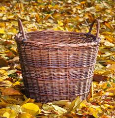 An empty wicker basket in autumn ochard.