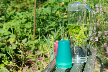 Water with mint and lemon balm
