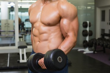 Mid section of shirtless muscular man exercising with dumbbell