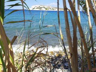 Sazlı Sahil