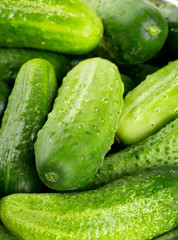 fresh cucumber background
