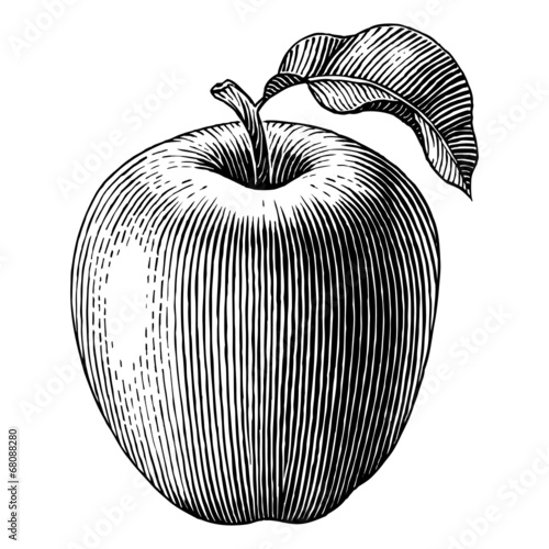 Engraved apple - 68088280