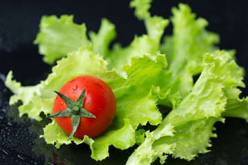 Cherry tomato and leaf salad