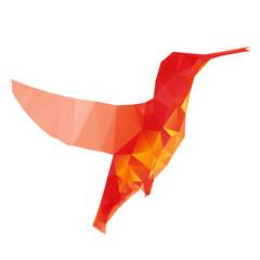 Hummingbird, vector illustration