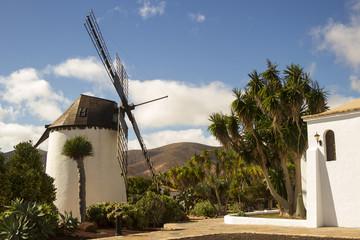 Windmill of Antigua