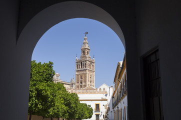La Giralda Tower through an arch