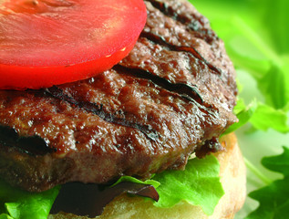 burger on bun with tomato and lettuce