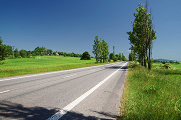 An empty road lined with trees in the rural landscape