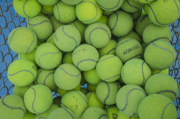 Tennis balls in the basket