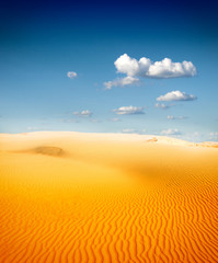 sahara sand desert
