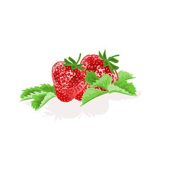 Strawberries with leaves fruit healthy food vector