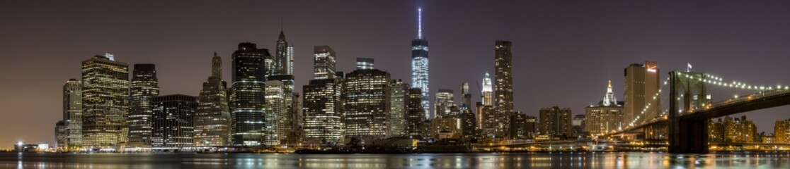 2014 New York Downtown Panorama