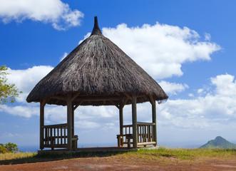 """Arbor in wood, Park """" Black river Gorge """".Mauritius."""