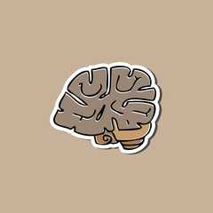 Brain sticker drawing cartoon