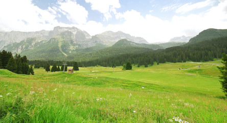green valley in Dolomites mountains in summer